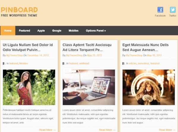 pinboard social media widgets wordpress theme