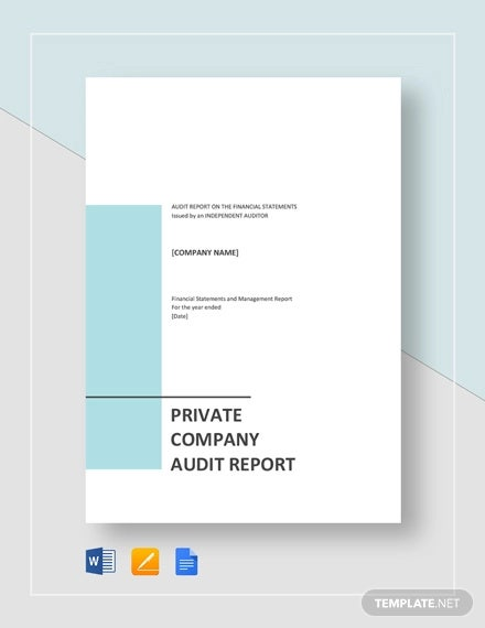 private company audit report sample template