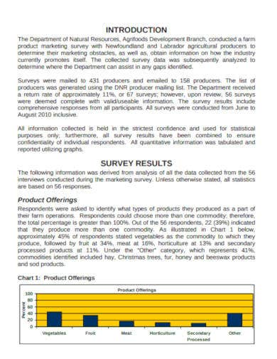 product marketing survey report in pdf