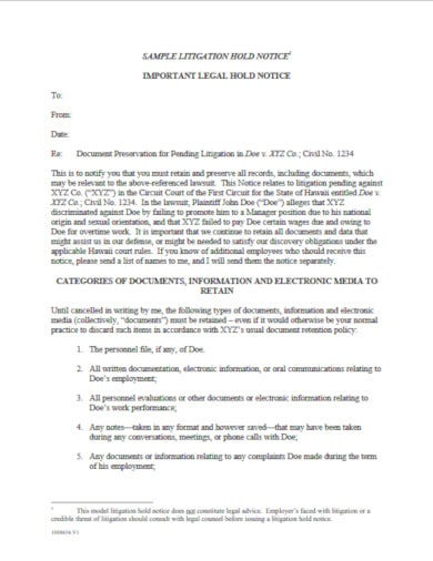 professional litigation hold notice