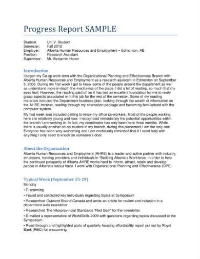 progress report sample 1