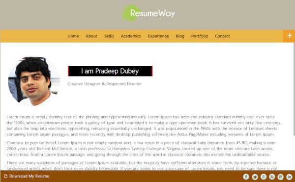 resumeway responsive wordpress theme