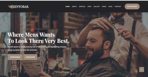 Sentobar - Customized Typography WordPress Theme