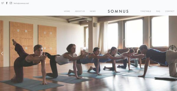 somnus-custom-menu-integrated-wordpress-theme
