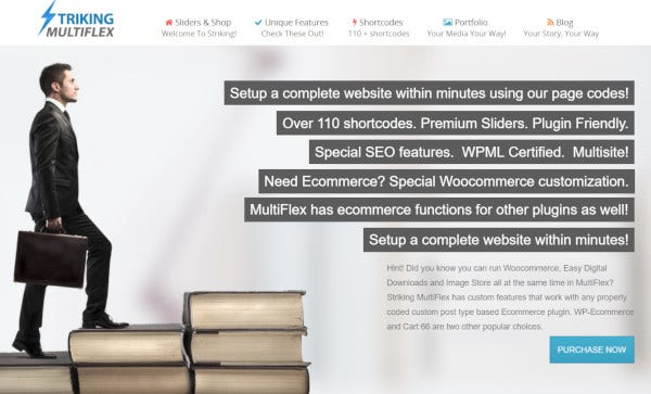 striking-multiflex-single-click-wordpress-theme