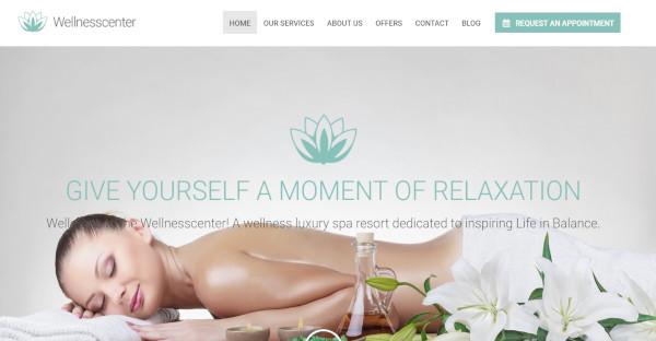 Wellness Center - Custom WordPress Theme