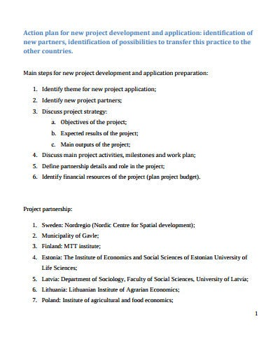 application for action plan template