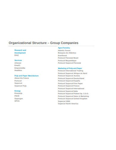 basic company structure in pdf