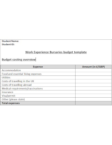 blank budget template for students