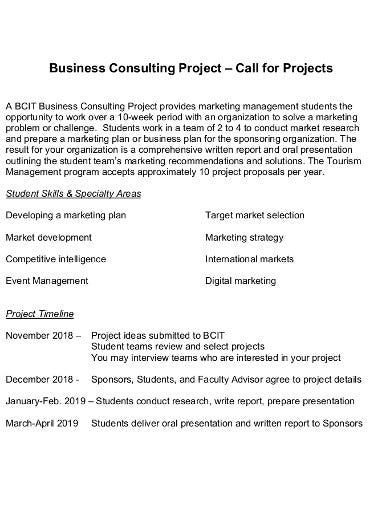 12 consulting project plan templates in pdf xls free