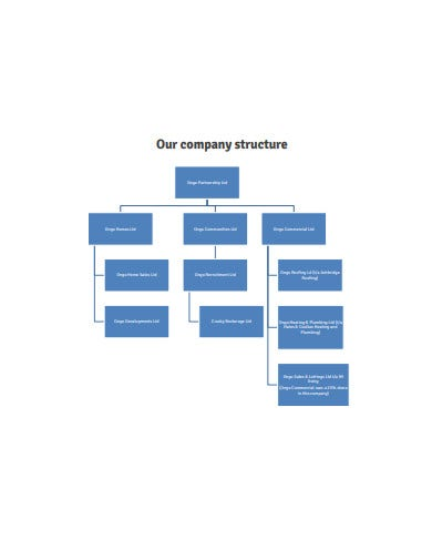 company structure in pdf