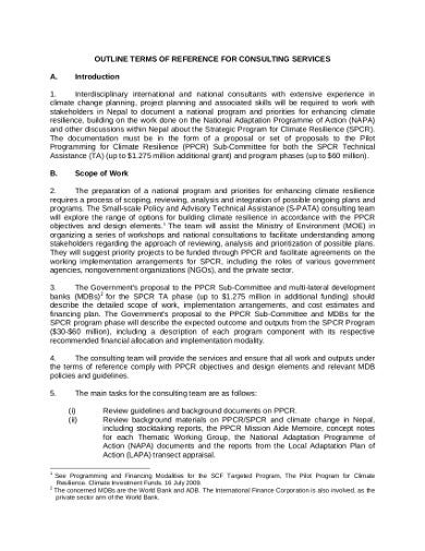 consulting project plan in pdf