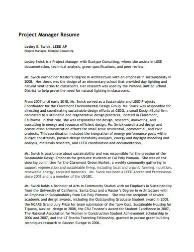consulting resume for project manager