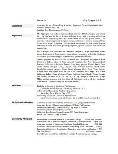 consulting resume in pdf