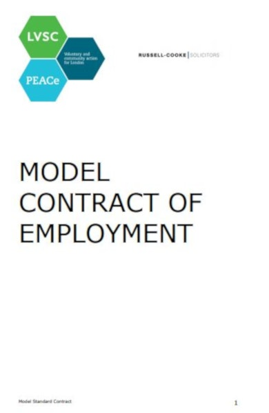 detailed job contract template