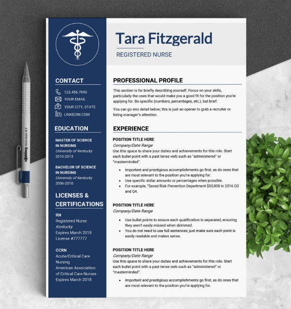 formal travel nursing resume template