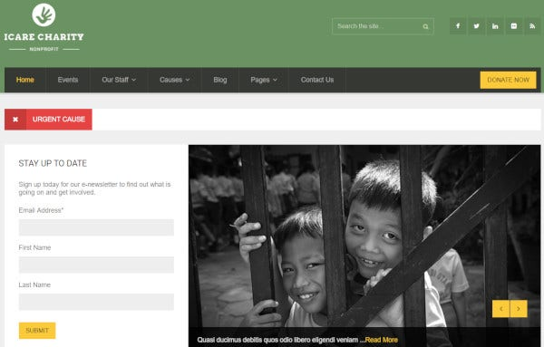 icare charitypaypal integrated wordpress theme