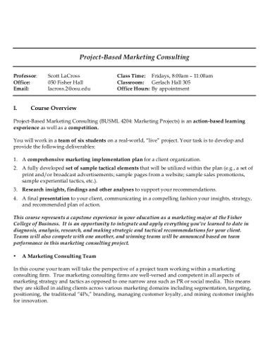 marketing consulting plan in pdf