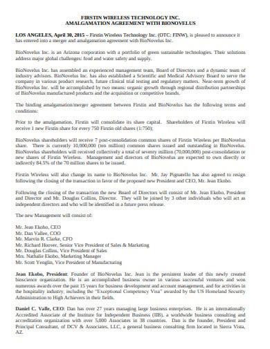 new amalgamation agreement in pdf
