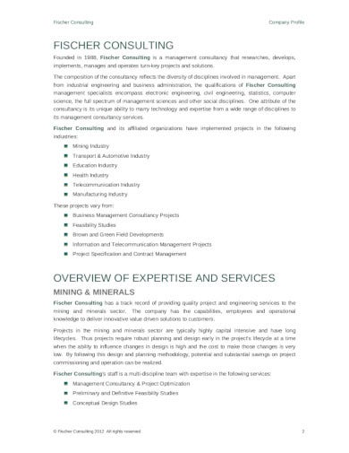 printable consulting company profile template
