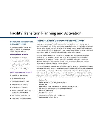 professional consulting project plan template