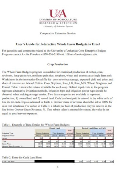professional interactive whole farm budget