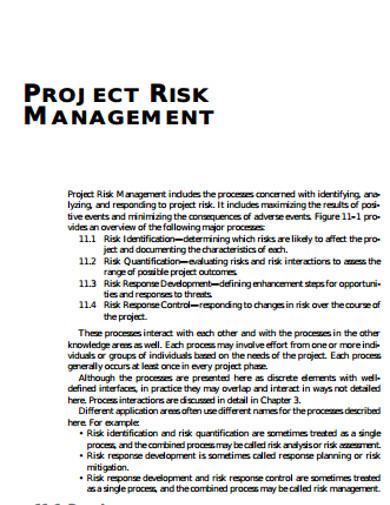 project risk management format