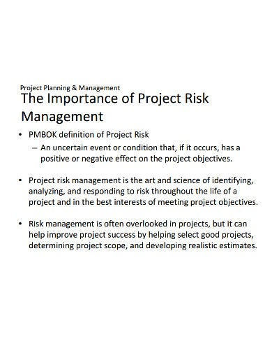 project risk management planning template