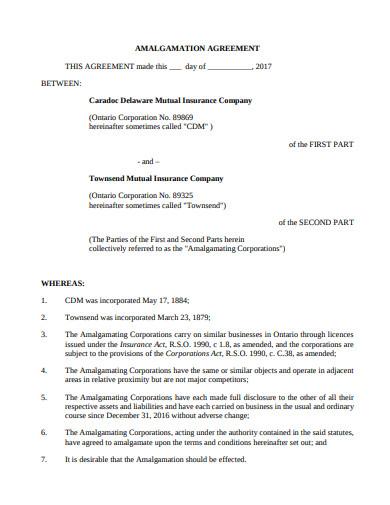 sample amalgamation agreement