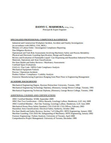 sample consulting resume format