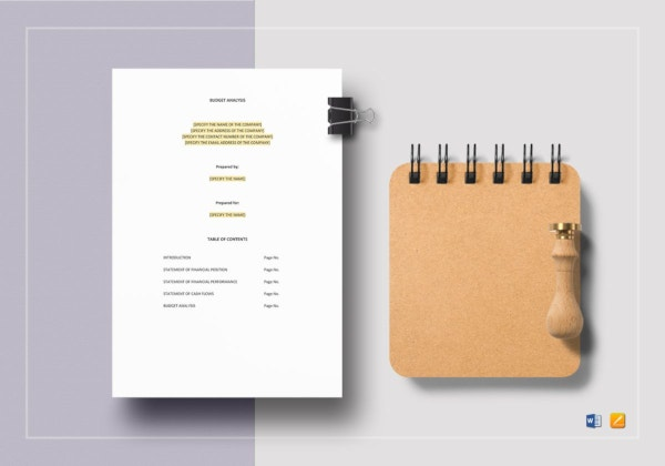 standard budget analysis template