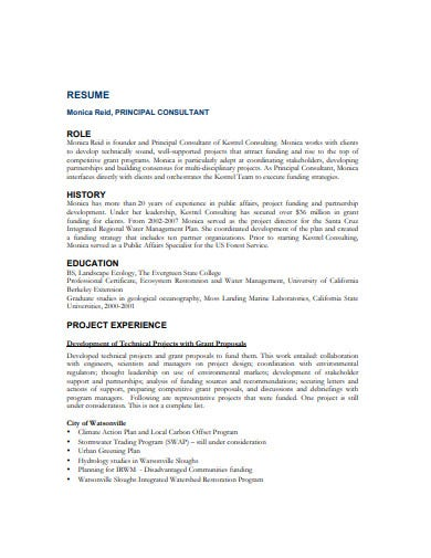 standard consulting resume format