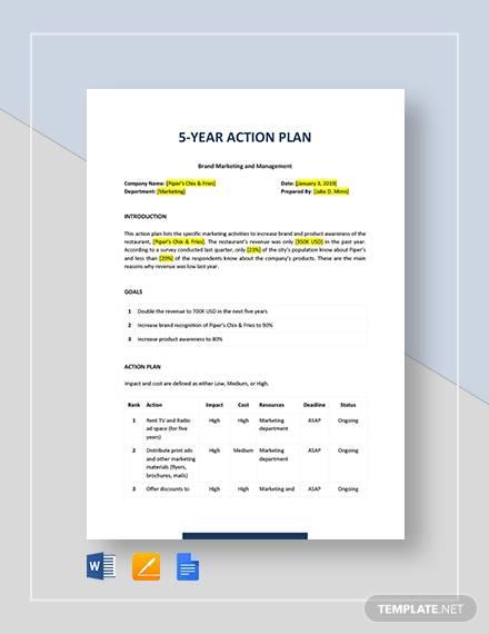 5 year action plan 1