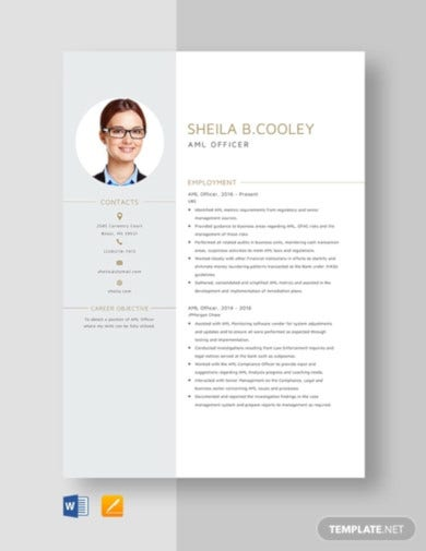 11  officer resume templates