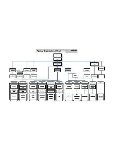 agency organizational chart in pdf