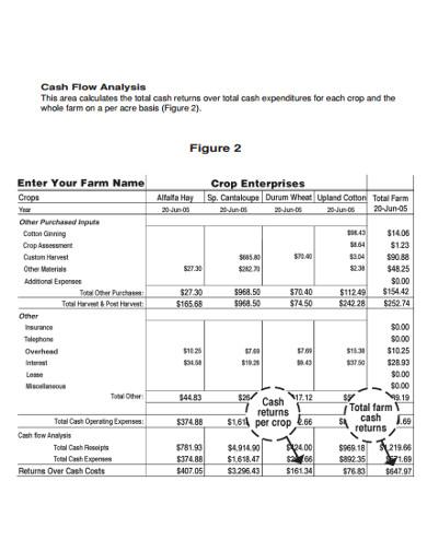 cash flow analysis sample