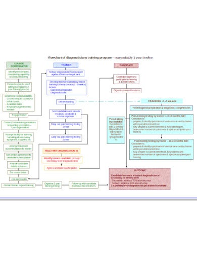 clinic-training-flow-chart-template