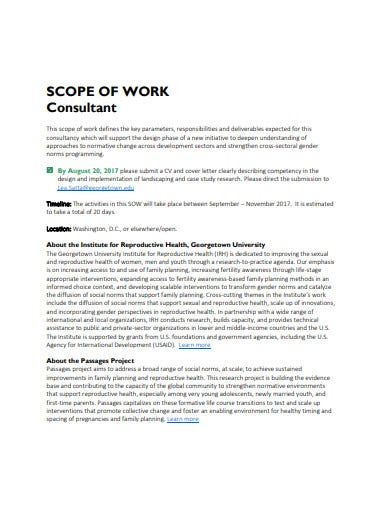 consultant scope of work example
