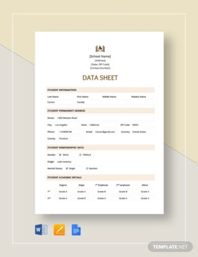 data sheet template4