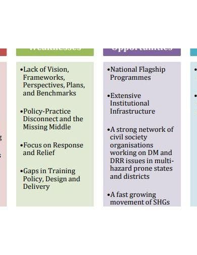 detailed swot analysis report example