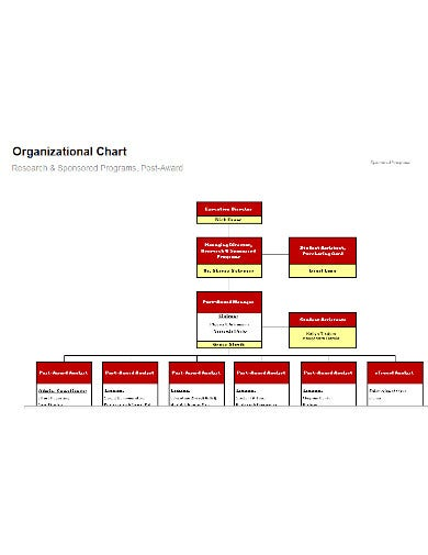 education organizational chart template in xls