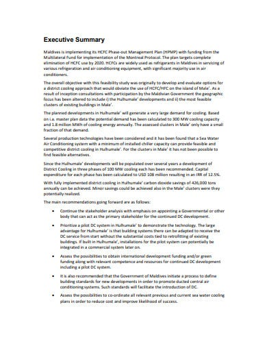 final feasibility report template