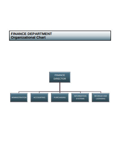 finance department organizational chart format