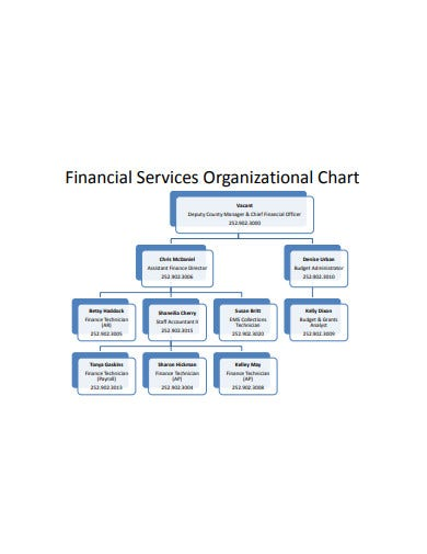 finance service organizational chart example