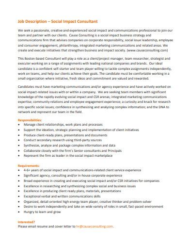 job description of social impact consultant