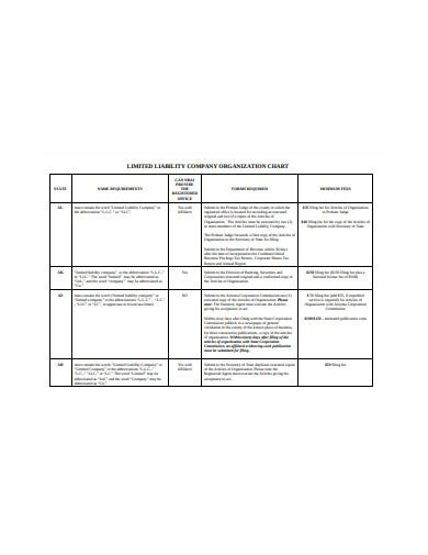 limited laibitity company organization chart template