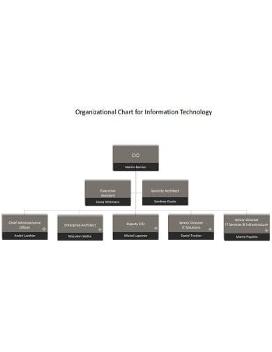 organizational chart for it