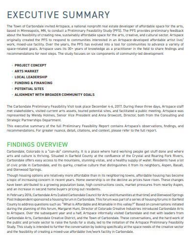 pre limenary feasibility report