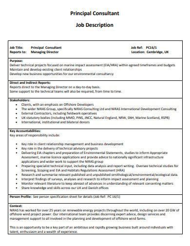 21+ Consultant Job Description Templates - PDF | Free