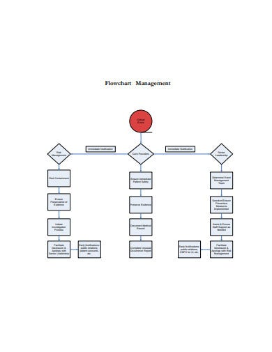 15  management flow chart templates in pdf